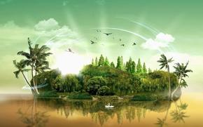 Обои пальмы, вода, остров, деревья, облака, птицы лебеди