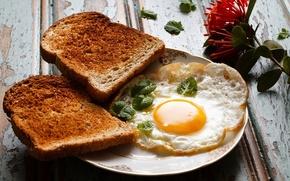 Картинка еда, завтрак, хлеб, яичница, тосты