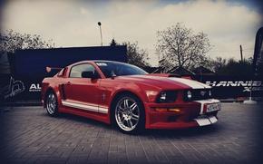 Картинка Mustang, Евразия, АМТ, 161