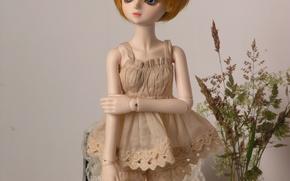 Картинка кукла, платье, рыжая, doll, BJD, шарнирная кукла