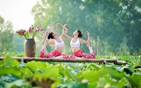 Картинка лето, листья, природа, девушки, гимнастика, йога, азиатки