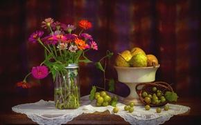 Картинка цветы, виноград, фрукты, натюрморт, груши, цинния