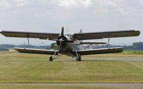 Обои самолёт, аэродром, Anna, многоцелевой, биплан, лёгкий, Antonov, An-2