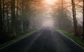 Обои туман, утро, дорога