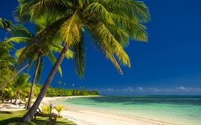 Обои море, пальмы, побережье, лодки, sea, coast, palm trees, boats