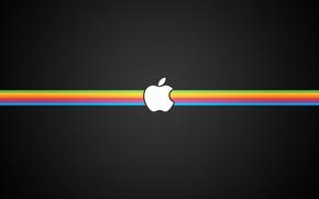 Обои apple, полосы, черный