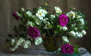 Картинка розы, букет, шиповник