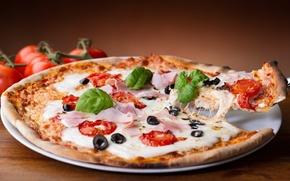 Обои сыр, помидоры, pizza, пицца, маслины, блюдо