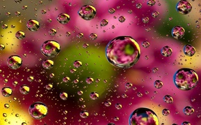 Обои abstract, colors, background, colorful, floral, bubbles, фон