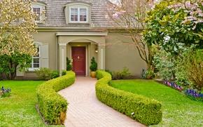 Картинка цветы, сад, цветущий, газон, кусты, особняк, дом, дорожка, дизайн