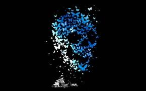 Обои Череп, Butterflys, Mathiole, Kid, Бабочки, Matheus Lopes Castro, Skull, Ребенок