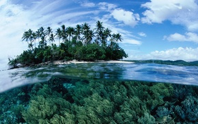 Картинка вода, прозрачность, пальмы, океан, остров, лагуна