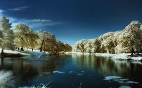 Картинка зима, синий, озеро, дерево, blue, winter, lake, tree