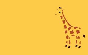 Обои минимализм, животное, жираф