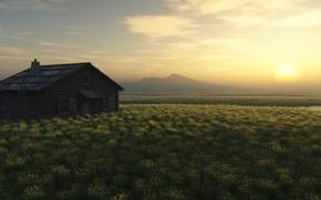 Картинка поле, дом, рассвет