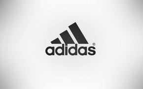 Картинка Адидас, беый фон, фирма, спорт, товары, adidas