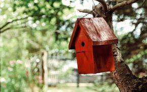 Картинка природа, фон, дерево, домик