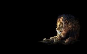 Картинка кошка, минимализм, лев, арт, heather lara