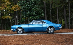 Картинка Chevrolet, Камаро, Шевроле, Camaro, 1968, Z/28