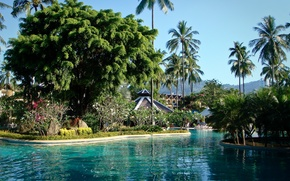 Картинка пальмы, бассейн, phuket thailand