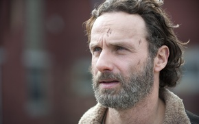 Картинка взгляд, лицо, The Walking Dead, Andrew Lincoln