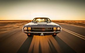 Картинка дорога, небо, солнце, фары, тень, капот, горизонт, водитель, Dodge, Challenger, спереди