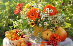 Обои летний сад, букет, алыча., столе, натюрморт, фрукты, груши, цветов