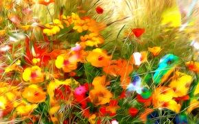 Картинка поле, трава, линии, цветы, краски, лепестки, луг
