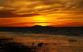 Обои озеро, трава, закат