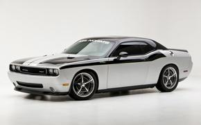 Обои мощь, колеса, Dodge Challenger, кузов