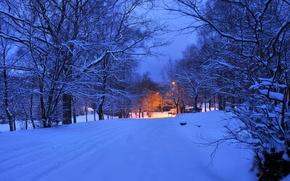 Обои зима, дорога, свет, снег, деревья, ночь, огни, вечер, фонарь