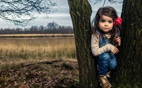 Картинка осень, дерево, девочка