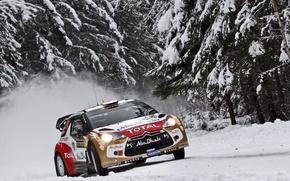 Картинка Зима, Снег, Лес, Елки, Citroen, Фары, DS3, WRC, Rally, Передок