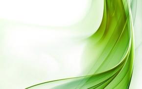 Обои белый, Зеленый, поток