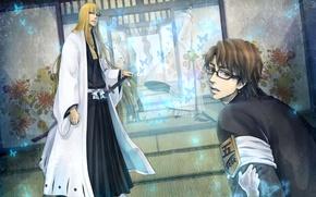 Картинка оружие, бабочка, катана, кимоно, bleach, hirako shinji, aizen sousuke