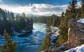 Картинка зима, деревья, горы, скалы, Канада, Альберта, Alberta, Canada, река Боу, Bow River