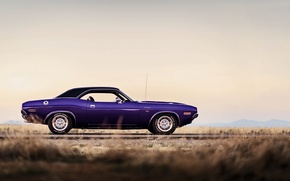 Картинка Dodge Challenger, muscle car, 1970, lunchbox photoworks