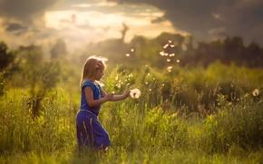 Картинка поле, лето, солнце, девочка