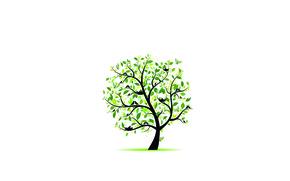 Картинка зелень, листья, птицы, дерево, бабочка, гнёзда