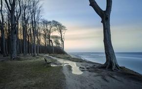 Обои берег, скамья, море