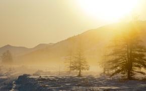 Картинка снег, деревья, пейзаж, горы, природа, туман