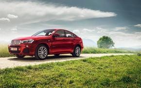 Картинка небо, трава, красный, бмв, BMW, red, xDrive35i, M Sports Package, Ciprian Mihai, F26