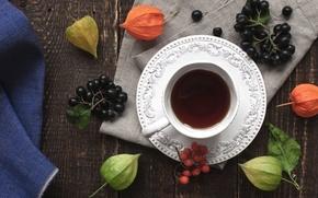 Обои ягоды, чай, арония, чашка, рябина, физалис, напиток