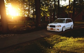 Картинка turbo, white, wheels, forest, subaru, japan, jdm, tuning, front, sti, face, low, stance, forester