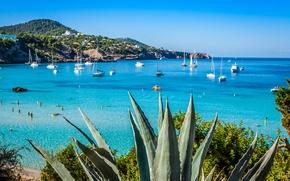 Картинка море, пляж, побережье, яхты, Испания, Ibiza