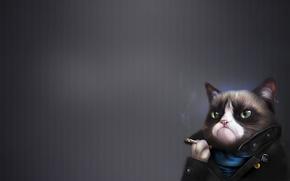 Обои Art, Grumpy Cat, Tardar Sauce, Сердитый Котик, Humor