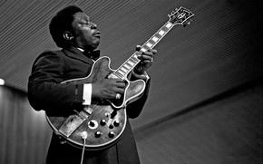 Картинка игра, гитара, блюз, Lucille, B.B. King