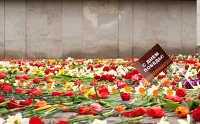 Картинка цветы, память, праздник, 9 мая, День победы, вечная