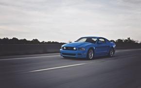 Картинка Mustang, Ford, Дорога, Скорость, Зад, Форд, Muscle, Мустанг, Car, Blue, Speed, Front, 5.0, Перед, Road, …
