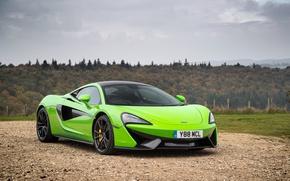Картинка McLaren, Автомобиль, Coupe, Салатовый, 570S, 2015-16